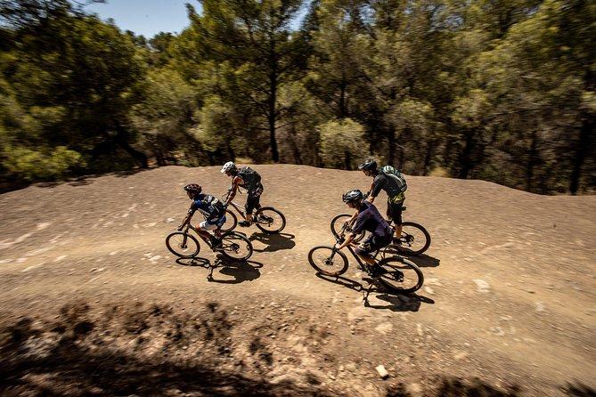 Malaga E-Bike Tour: Botanical Garden, Natural Park and Port of Malaga