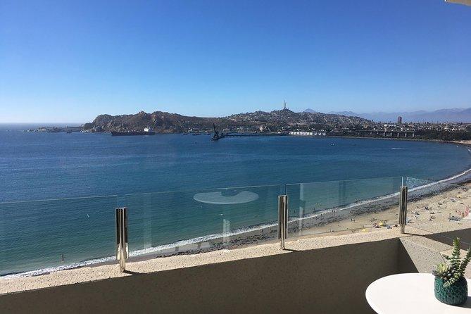 Coastal Circuit: Come to know Totoralillo - Guanaqueros - Tongoy