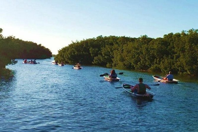 Small-Group Clear Kayak Tour in Shell Key