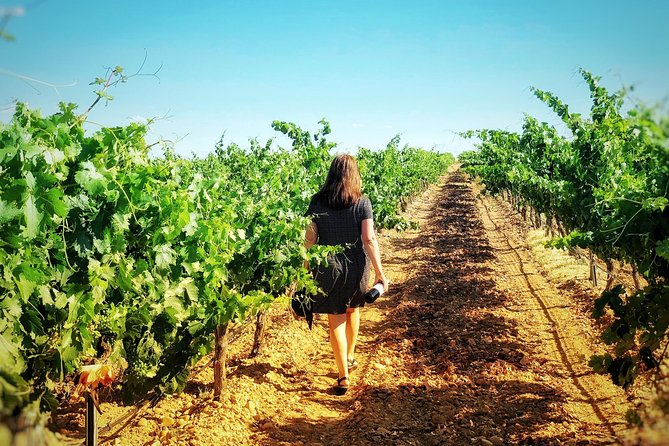 Discover the authentic wine culture of Rueda