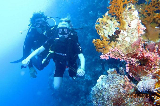 Diving Tour in Hurghada photo 4
