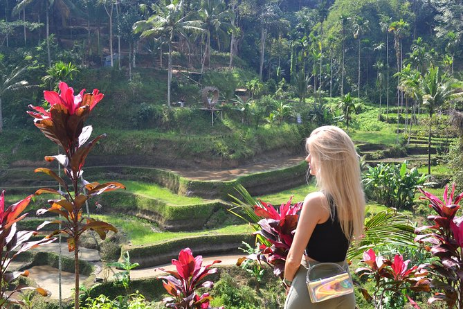 Ubud Customize Tours Visiting The Most Highlight