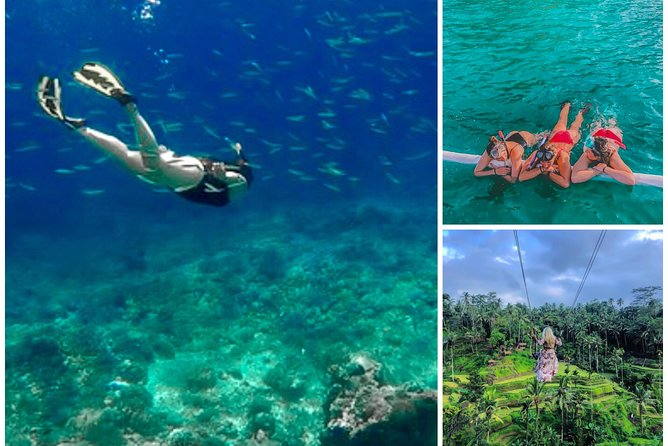 All Ticket Inclusive : Bloo Lagoon Snorkeling with Tegalalang Jungle Swing