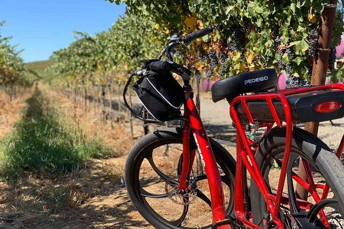 Livermore Wine Country Electric Bike Rental photo 4