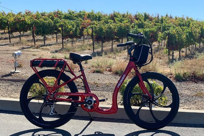 Livermore Wine Country Electric Bike Rental photo 9