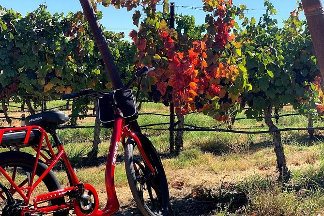 Livermore Wine Country Electric Bike Rental photo 6