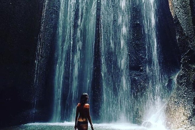 Ubud and Waterfall Tour