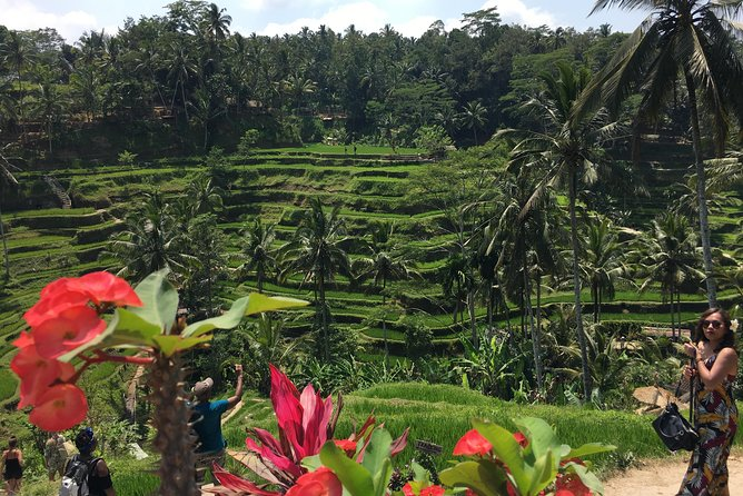 Ubud and Waterfall Tour photo 8
