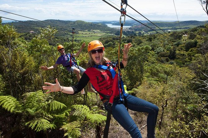 Full Day Waiheke Island Tour: Ziplining, Wine Tasting and Vineyard Lunch