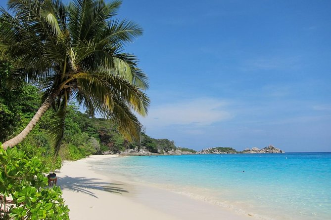 Similan Island Day Tour (JOIN TOUR) photo 4