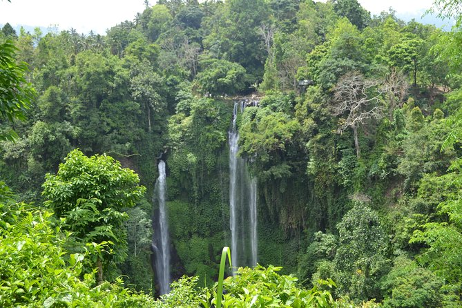 Day trip to Sekumpul Waterfall