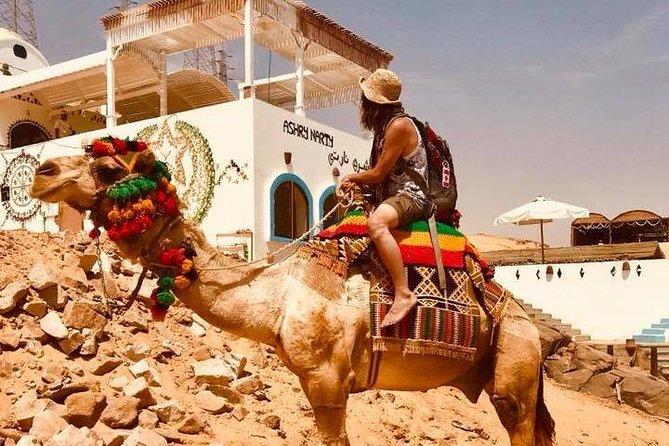 12 Days Pyramids, Egyptian Museum, Nile Cruise & Hurghada