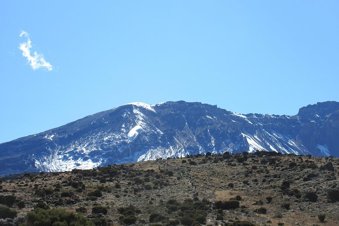 Kilimanjaro trekking - Machame route 7 days photo 9