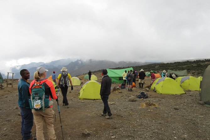 Kilimanjaro trekking - Machame route 7 days photo 4