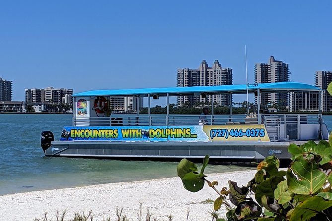 Clearwater Encounters with Dolphins Tour