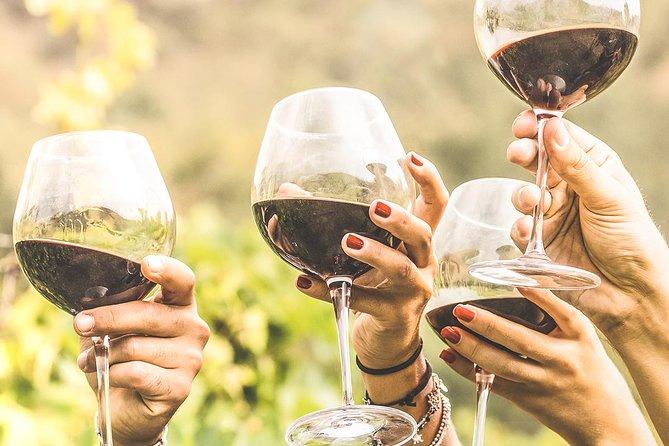 Day Tour in Colonia del Sacramento Uruguay with Wine Tasting