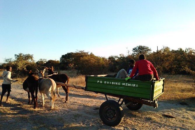 Great Zimbabwe & Culture Village 2-Day Tour