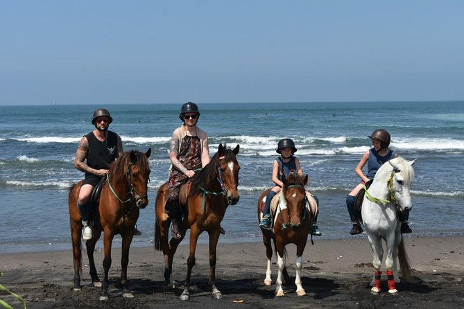 Private Tour: Horse riding-Kintamani volcano-Tegalalang-Tirta empul with Lunch