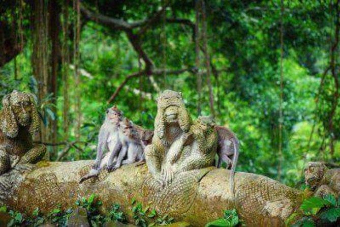 Bali: Swing And Ubud Tour