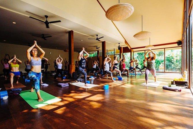 Ubud Yoga - Bali Swing