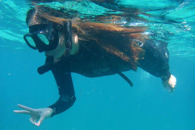 Beginner Snorkel Lessons at Goat Island Marine Reserve