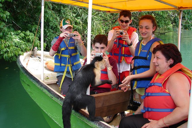 Day tour in Gatun Lake and Monkey Island - All Included (Kayaks, Lunch)