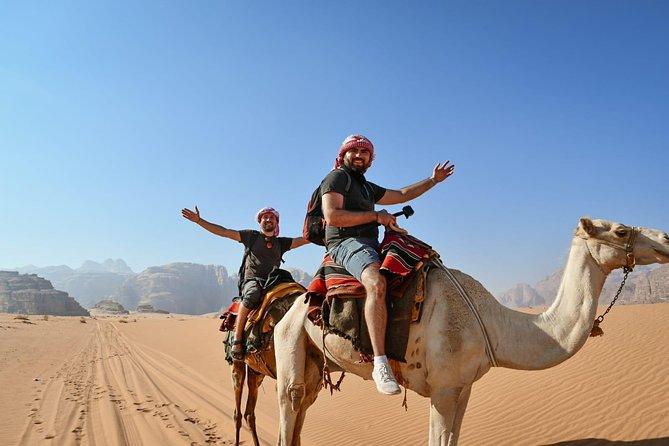Petra & Wadi Rum Wildlife Desert Camping & Safari