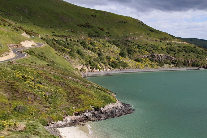 Otago Peninsula's remote and craggy coastline driving audio tour
