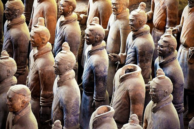 Terracotta Warriors with Cooking Class plus Wet Market Visit in Xi'an