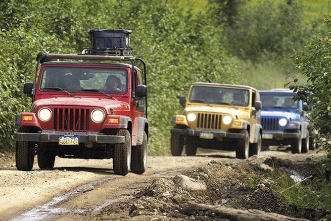 Excursión por la costa en Ketchikan: Safari en vehículo todoterreno y canoa