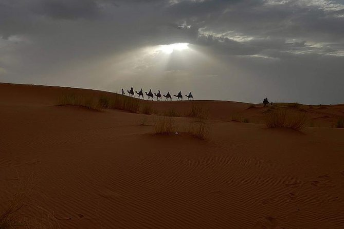 Marrakech Desert Quad Biking and Camel Ride with Teak Break photo 2