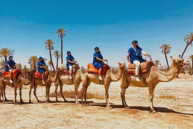 Marrakech Desert Quad Biking and Camel Ride with Teak Break photo 7
