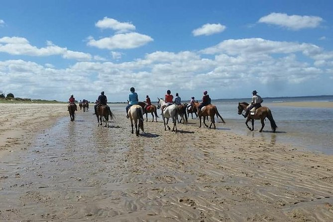 Horseback riding - for cruise passengers