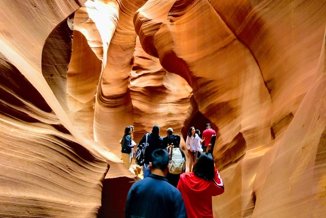 Lower Antelope Canyon and Horseshoe Bend 1 Day Bus Tour from Las Vegas