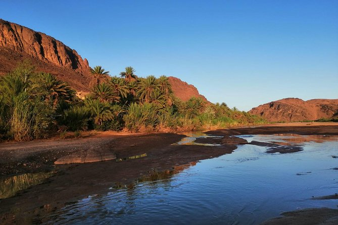 Excursion Ait Ben Haddou and Oasis of Fint