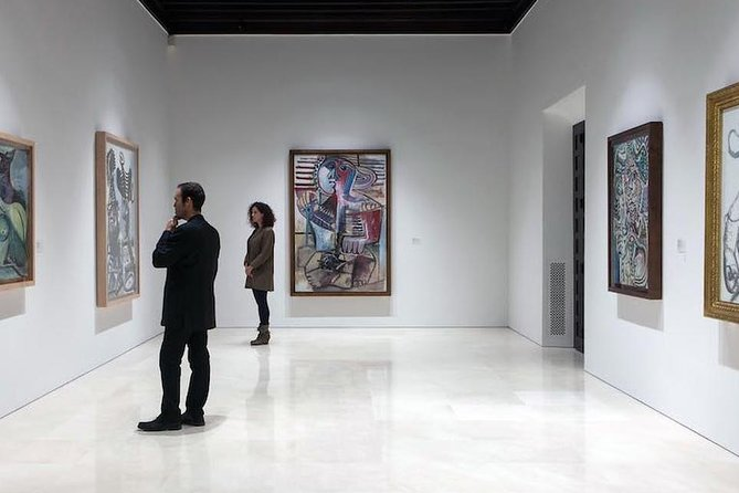 Málaga Picasso Museum Private Guided Tour