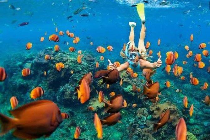 Gili Kondo Snorkeling Tour