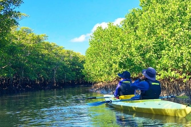 Half Day Canoe Tour in Ishigaki