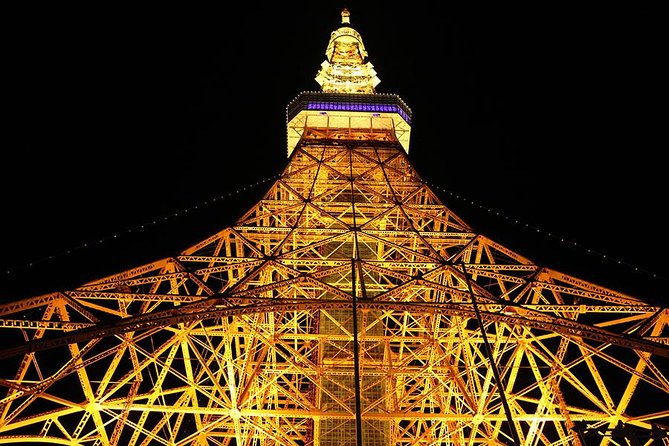 Private Tokyo City Night Tour