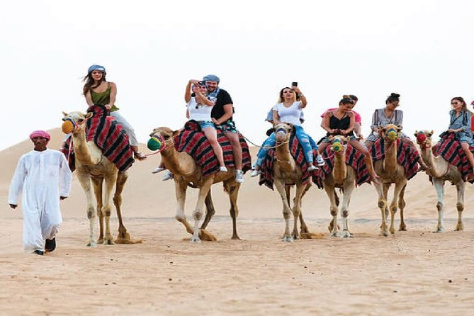 Camel Trekking and Morning Safari with Sand Boarding