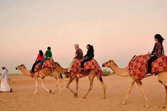 Camel Trekking and Morning Safari with Sand Boarding photo 7