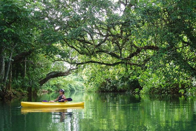 Small Group Kayaking Tour on the Rentapao River from Port Vila
