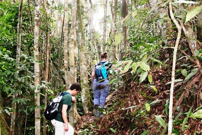Four-Day Trekking For School