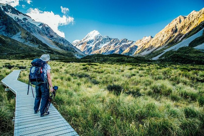 South Island New Zealand - Nature & Birding Experience
