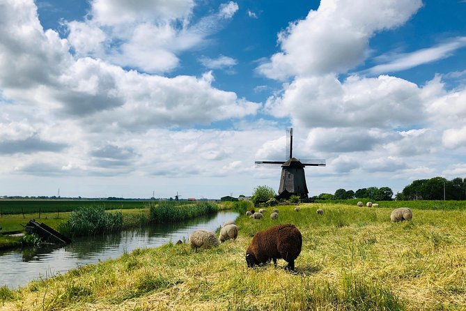 Private Tour Full Day - Cheese, Clogs & Windmills photo 6