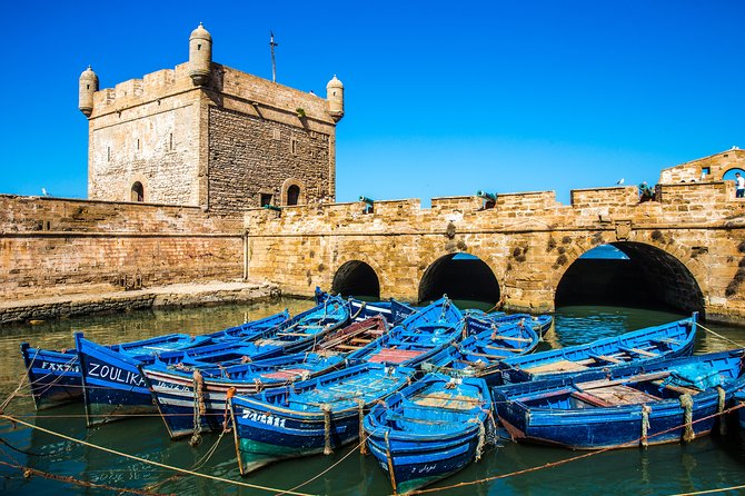 One day trip to Essaouira the city of organ trees and fishermen