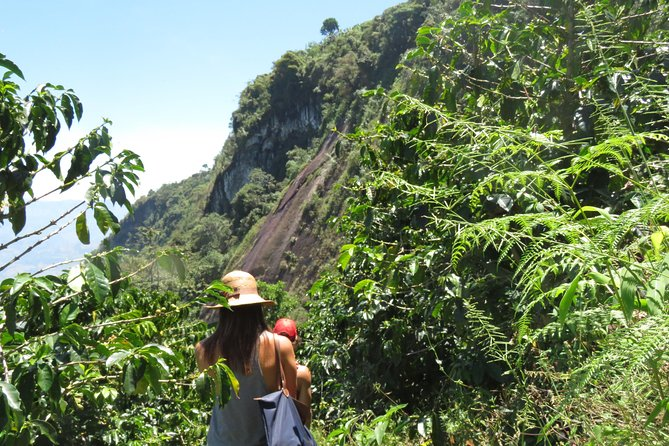 Eco-exploration Coffee and Rainbow waterfall tour in Jericó photo 15