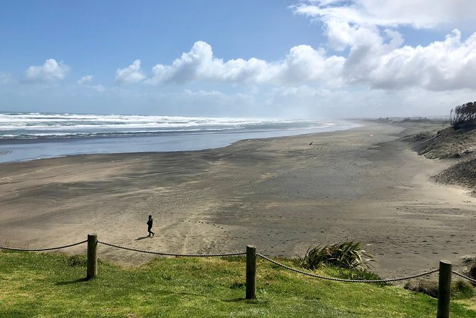 Muriwai Beach / Wine tour
