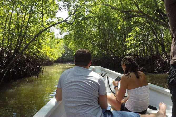 Langkawi Mangrove Forest and Cave Exploring Tour photo 7