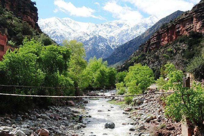 Small Group Half Day Trip to the Hight Atlas mountains 7 PERSON
